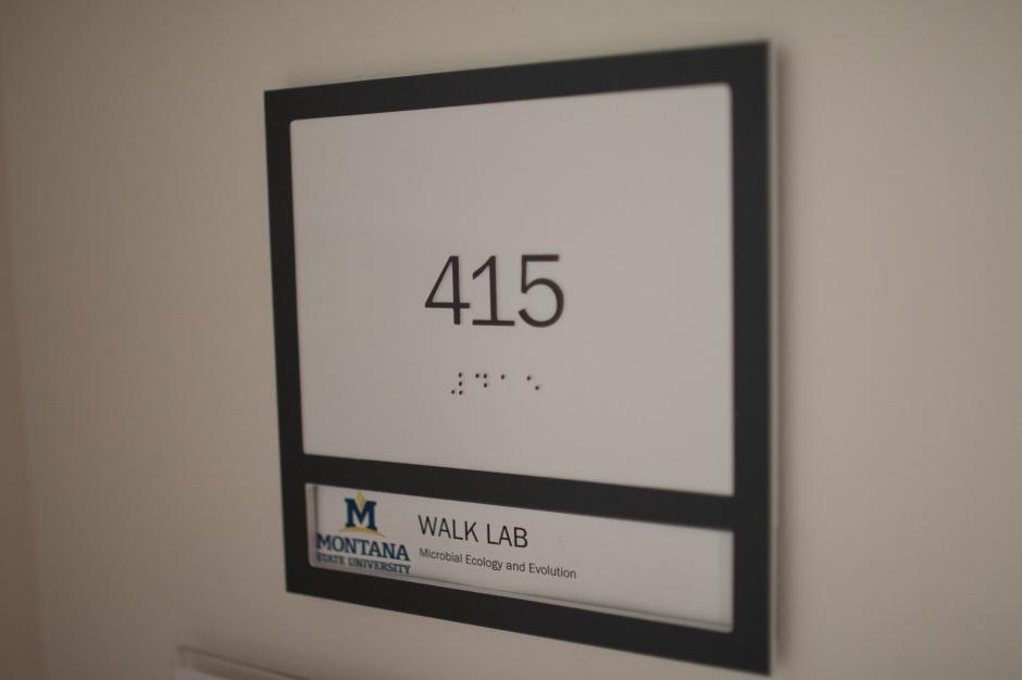 walklab24